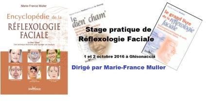 stage-reflexo